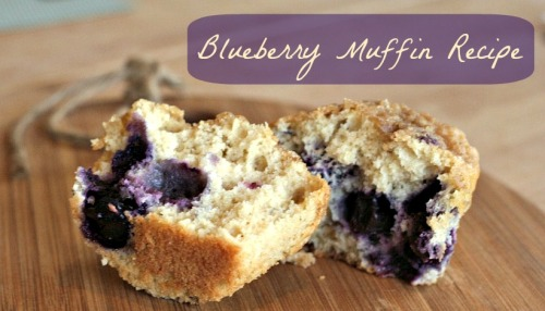 blueberrymuffin header