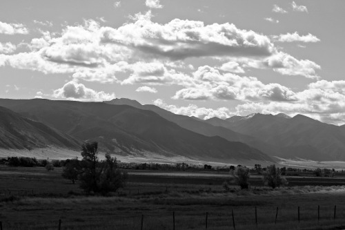 montana black and white mountains