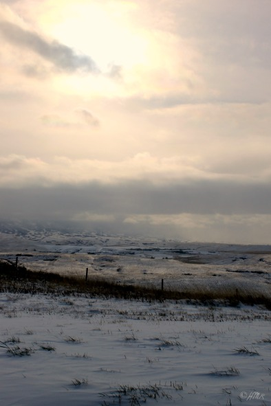 Wyoming winter landscape